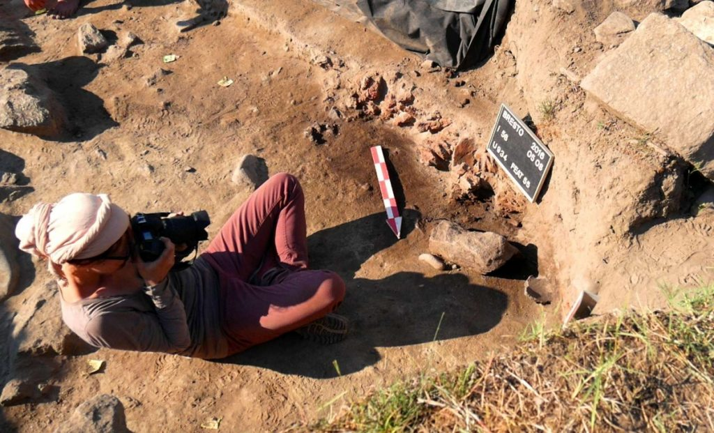 archaeology student on site