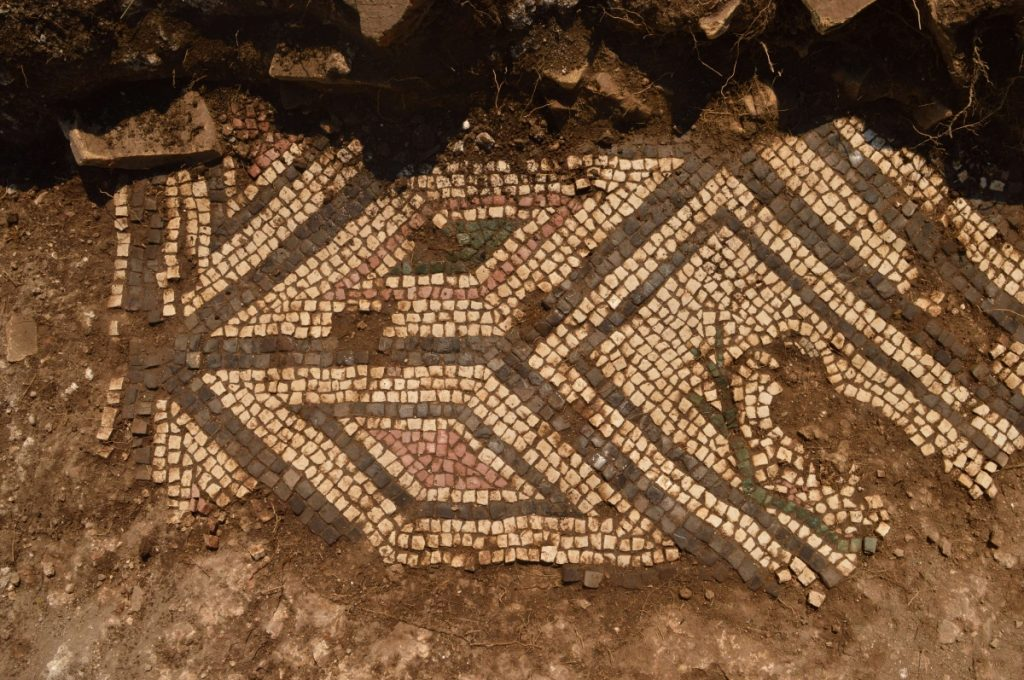 Montenegro Doclea excavation project with mosaics