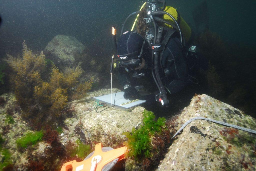 Underwater archaeology student under Mesambria